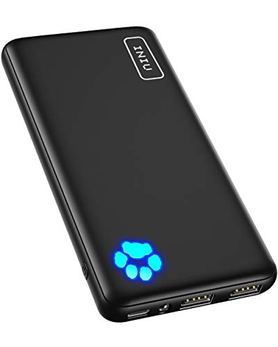 INIU Portable Charger