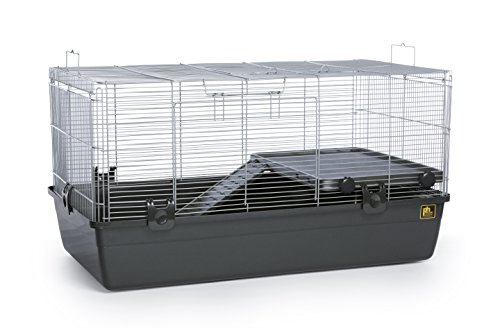 Prevue Pet Universal Small Animal Cage