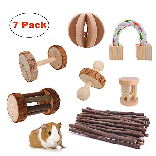 JanYoo Rat Toys & Accessories Kit